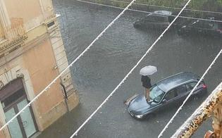 https://www.seguonews.it/maltempo-allagamenti-a-siracusa-automobilisti-salgono-sui-tetti-delle-proprie-auto