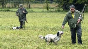 Parte la caccia, Wwf contraria