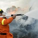 Alle operazioni di spegnimento partecipano anche i forestali