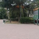 Piazza della Repubblica ripulita