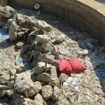 I rifiuti all'interno della fontana
