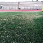 Le condizioni del manto erboso al Tomaselli